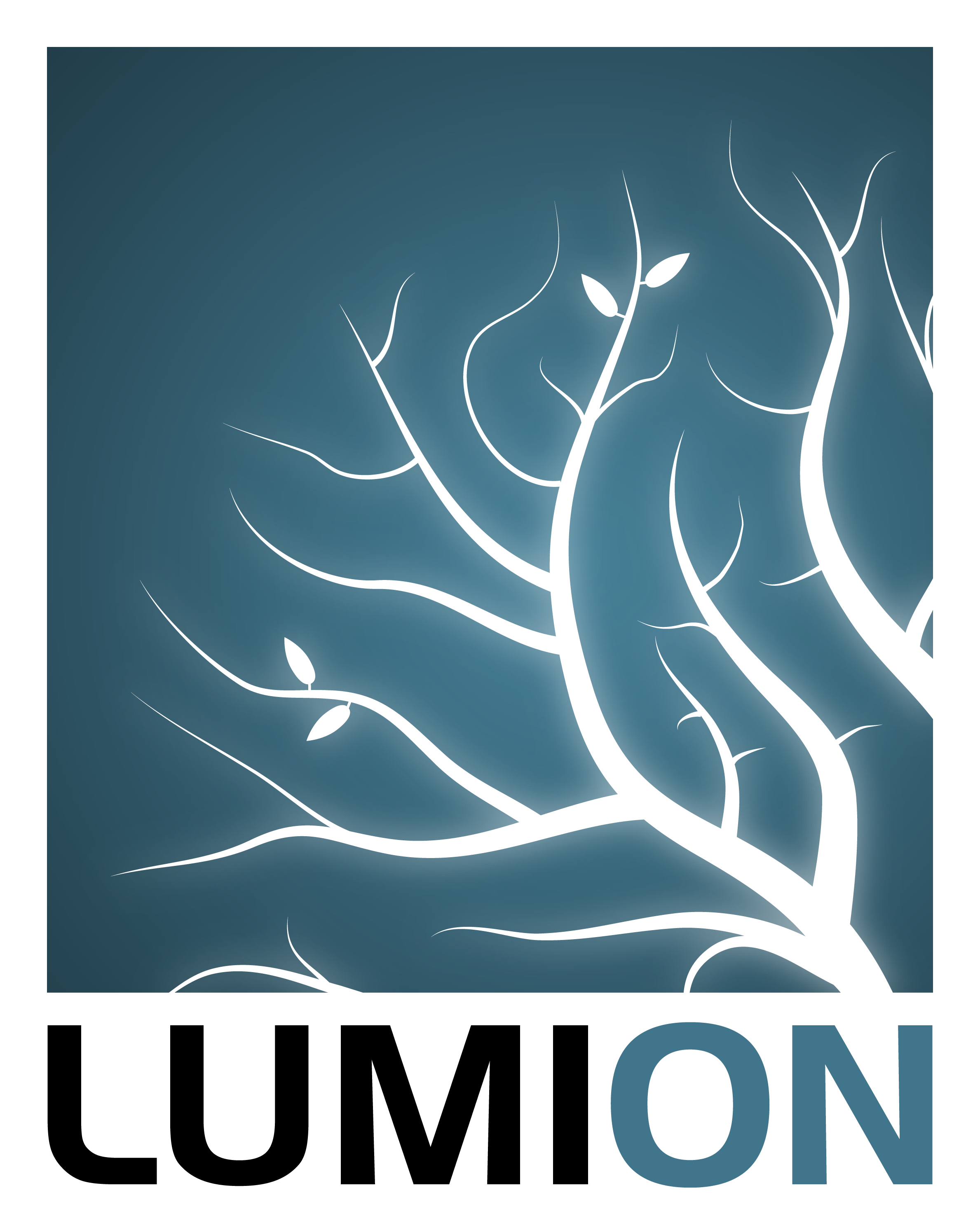 Lumion Logo 2016 FullColor On White